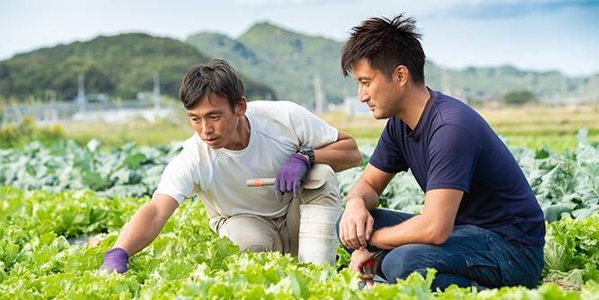 写真:遠藤さんと濱野さんの作業風景2