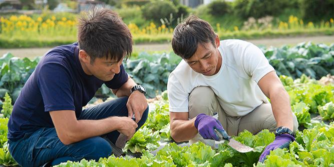 写真:遠藤さんと濱野さんの作業風景1