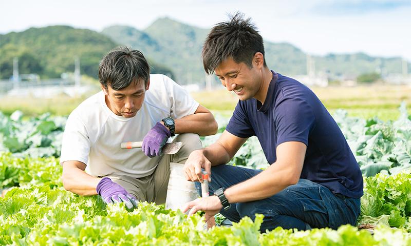 写真:遠藤さんと濱野さんの作業風景3