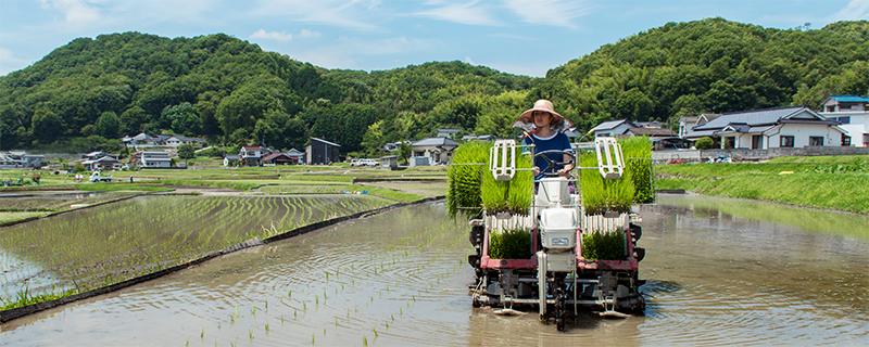 写真:農機具に乗っている様子